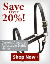 Camelot® Leather Adjustable Stable Halter!