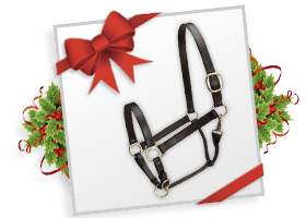 Camelot® Leather Adj Stable Halter w Snap!