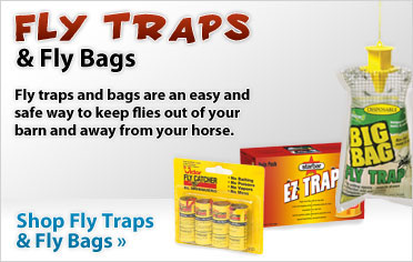 Fly Traps!