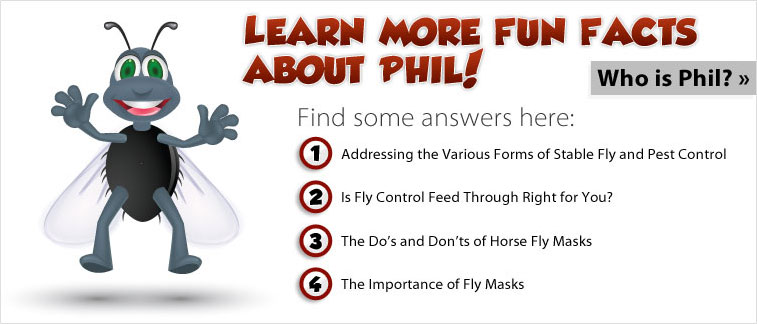 Learn More Fun Facts About Phil!