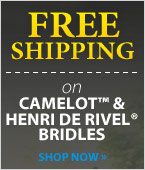 Camelot and Hentri De Rivel Bridles!