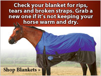 Check your blanket for rips and tears. It's important to keep your horse warm and dry.